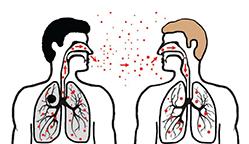 Disease_transmission_sneezing